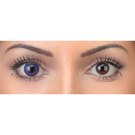 Neo Cosmo 2-tone N223 Violet