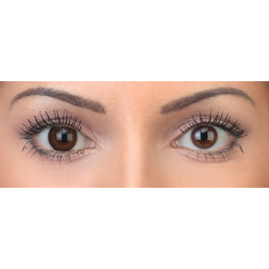 Neo Cosmo 2-tone N254 Brown